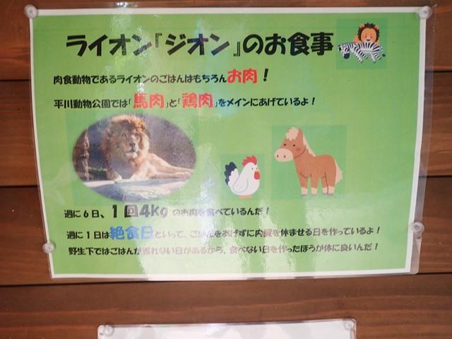 f:id:mochikichi-blog:20210103095048j:plain