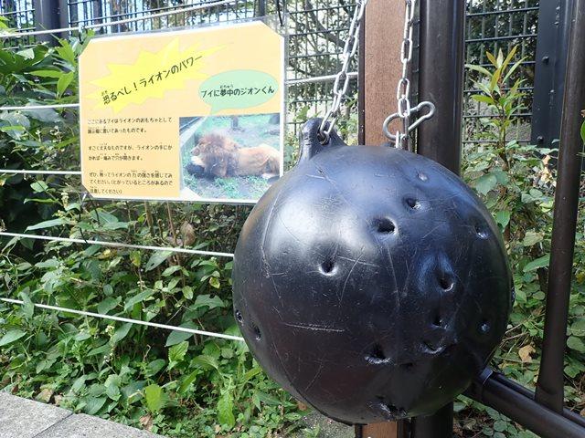 f:id:mochikichi-blog:20210103095101j:plain