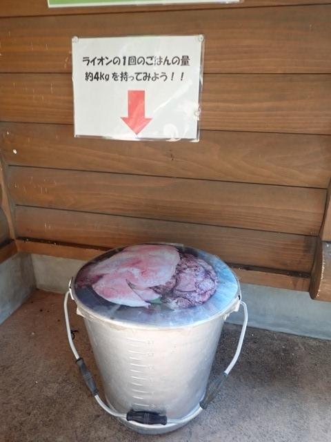 f:id:mochikichi-blog:20210103095105j:plain