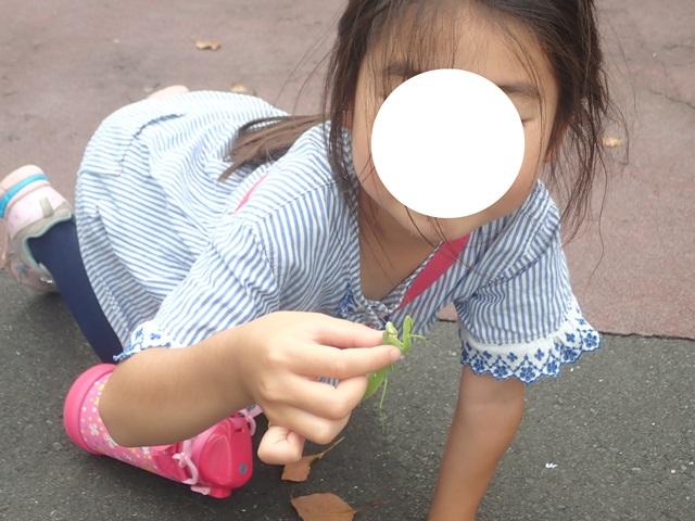 f:id:mochikichi-blog:20210103095306j:plain