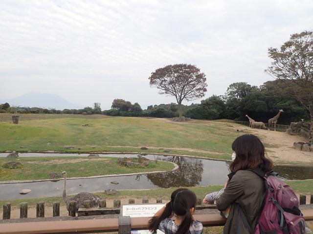f:id:mochikichi-blog:20210103095407j:plain