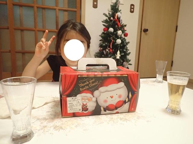 f:id:mochikichi-blog:20210110220558j:plain