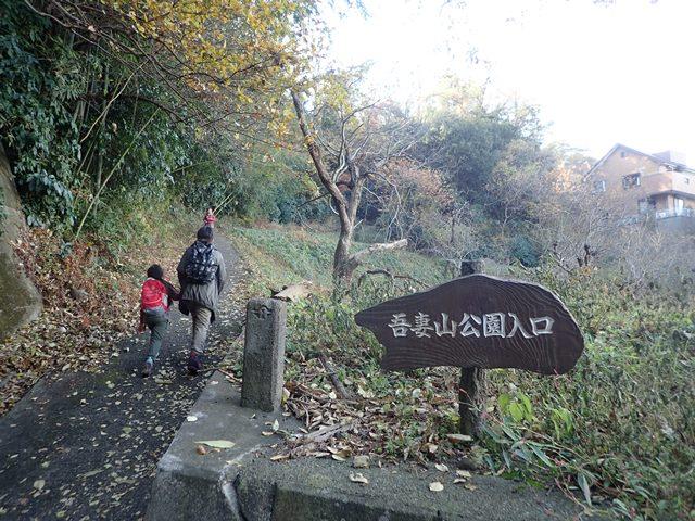 f:id:mochikichi-blog:20210111082741j:plain