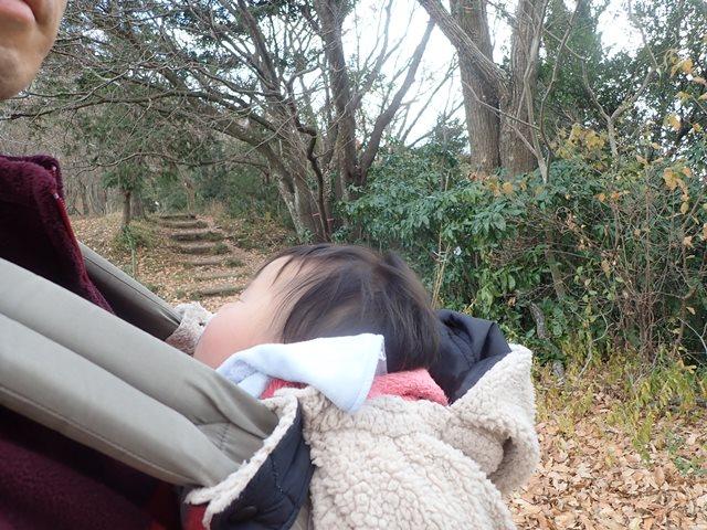 f:id:mochikichi-blog:20210111082753j:plain