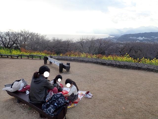 f:id:mochikichi-blog:20210111082825j:plain