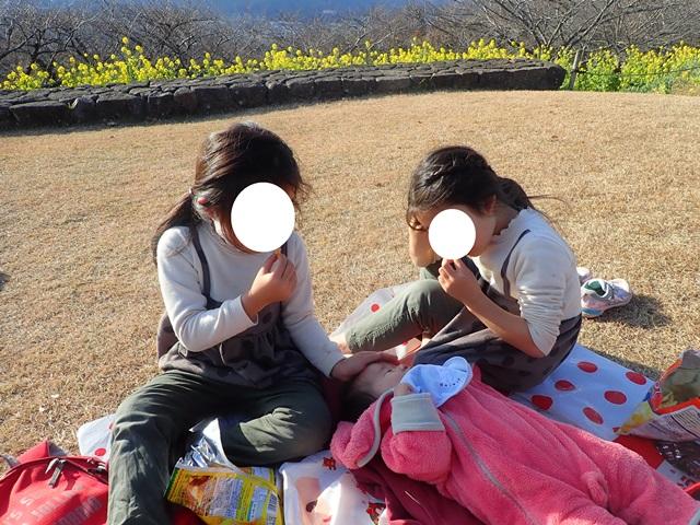f:id:mochikichi-blog:20210111082833j:plain
