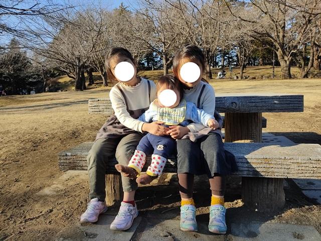 f:id:mochikichi-blog:20210206223207j:plain