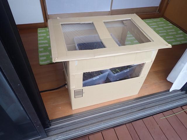 f:id:mochikichi-blog:20210321214933j:plain