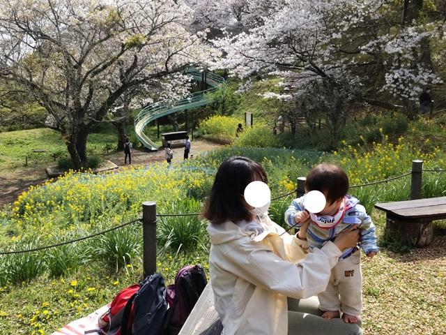 f:id:mochikichi-blog:20210330204856j:plain
