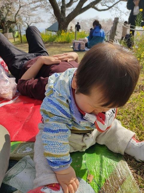 f:id:mochikichi-blog:20210330204911j:plain