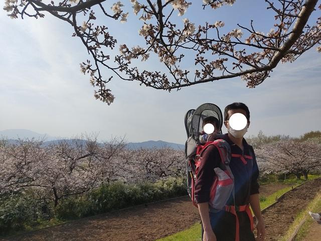 f:id:mochikichi-blog:20210330204916j:plain