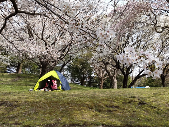 f:id:mochikichi-blog:20210404210751j:plain