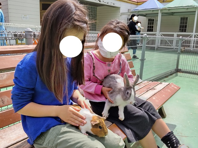 f:id:mochikichi-blog:20210404210810j:plain
