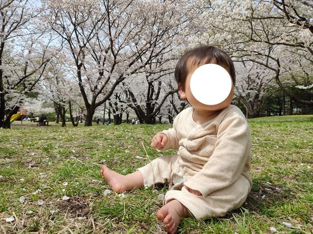 f:id:mochikichi-blog:20210404210830j:plain