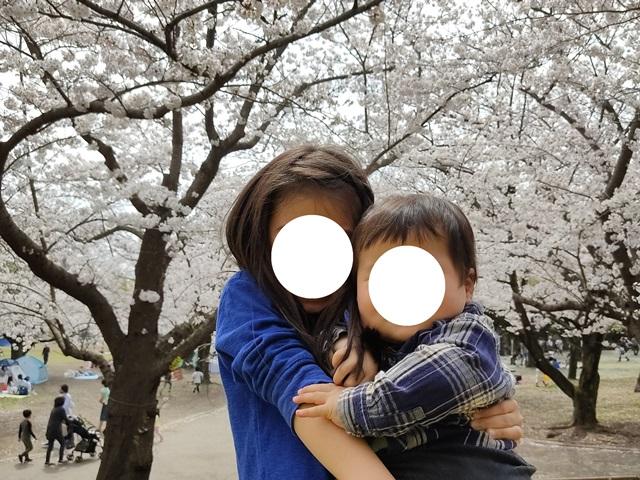 f:id:mochikichi-blog:20210404210836j:plain