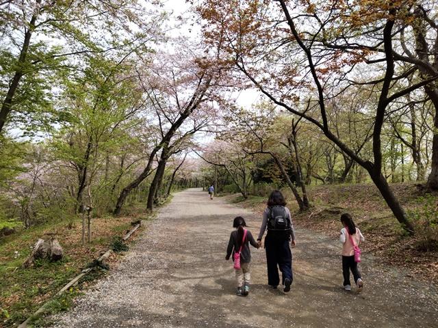 f:id:mochikichi-blog:20210408222043j:plain