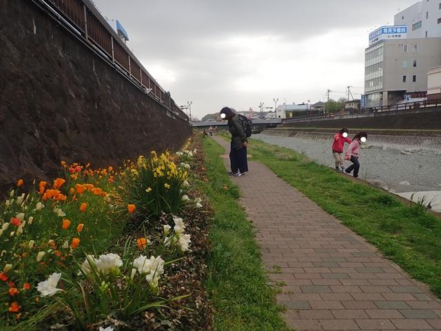 f:id:mochikichi-blog:20210408222210j:plain