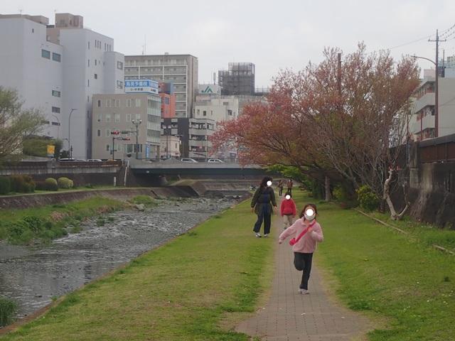 f:id:mochikichi-blog:20210408222216j:plain