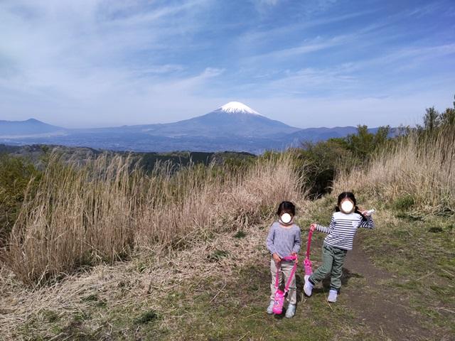 f:id:mochikichi-blog:20210426104613j:plain