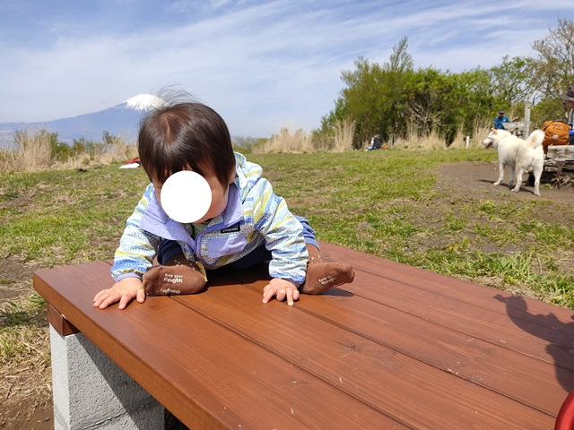 f:id:mochikichi-blog:20210426203422j:plain