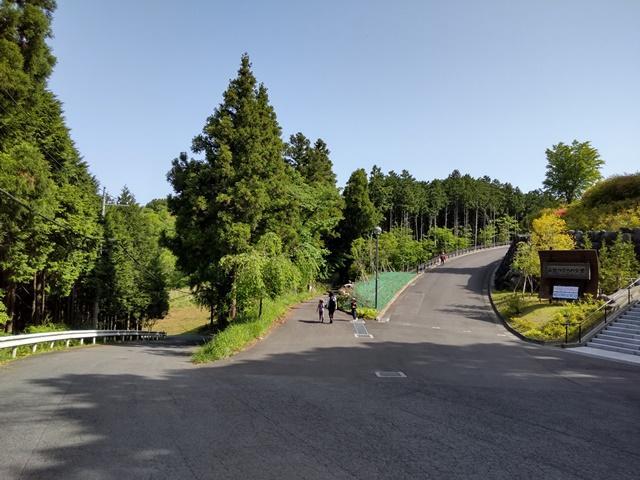 f:id:mochikichi-blog:20210508213807j:plain