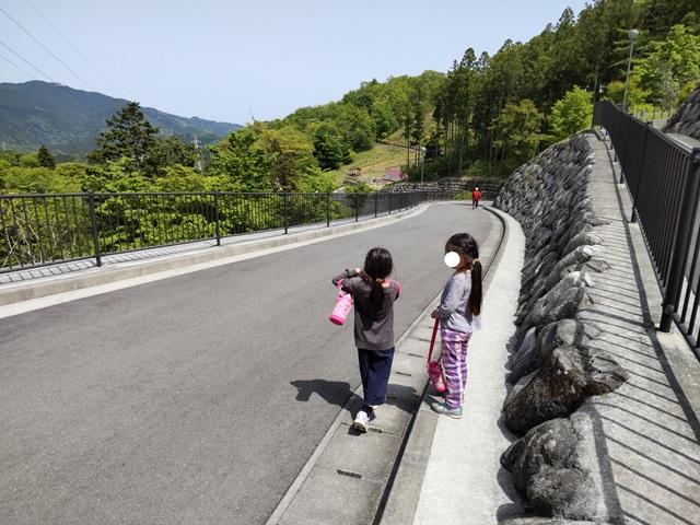 f:id:mochikichi-blog:20210508213946j:plain
