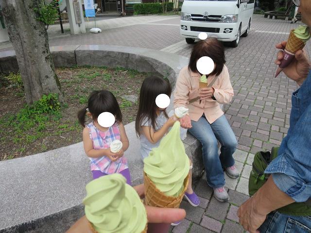 f:id:mochikichi-blog:20210517202353j:plain