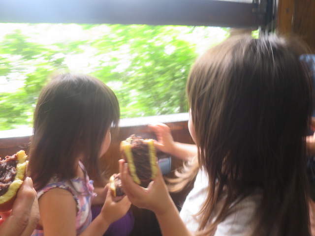 f:id:mochikichi-blog:20210517202515j:plain