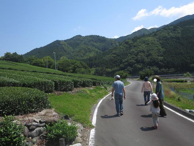 f:id:mochikichi-blog:20210517212611j:plain