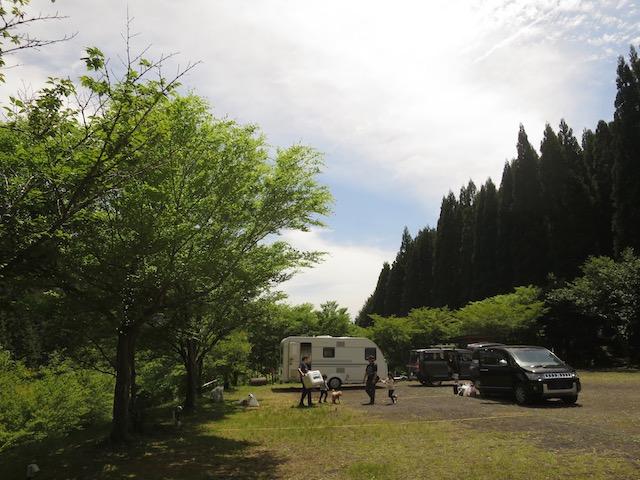 f:id:mochikichi-blog:20210517223615j:plain