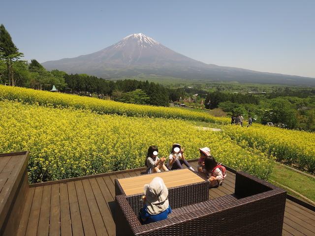 f:id:mochikichi-blog:20210517224012j:plain