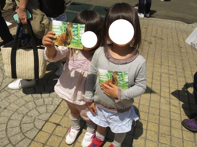 f:id:mochikichi-blog:20210517224022j:plain