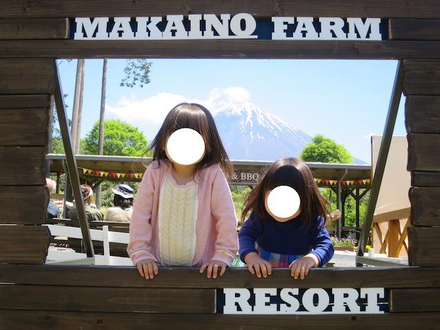 f:id:mochikichi-blog:20210517225033j:plain