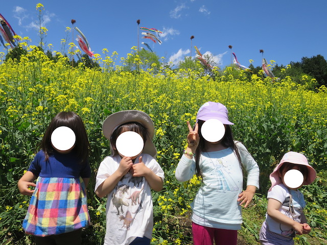 f:id:mochikichi-blog:20210517225100j:plain