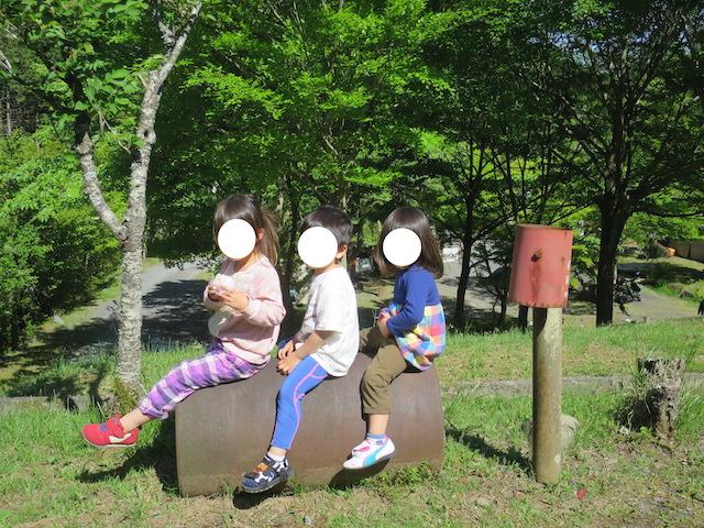 f:id:mochikichi-blog:20210517225133j:plain