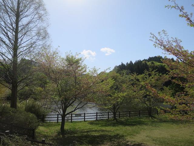 f:id:mochikichi-blog:20210518220247j:plain