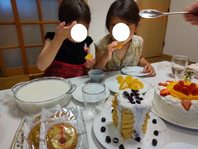 f:id:mochikichi-blog:20210601215918j:plain