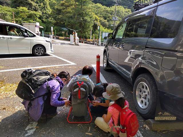 f:id:mochikichi-blog:20210604224829j:plain