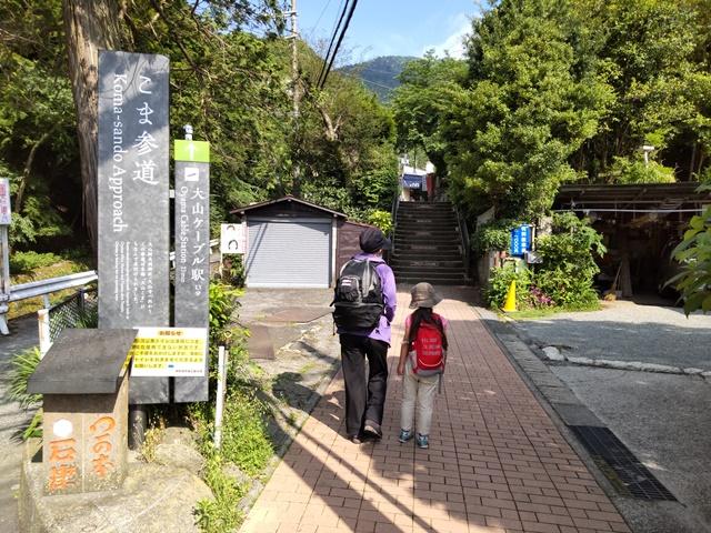 f:id:mochikichi-blog:20210604224836j:plain