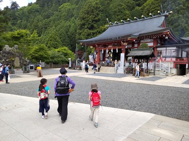 f:id:mochikichi-blog:20210604224907j:plain
