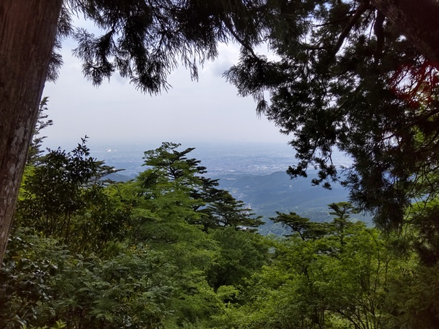 f:id:mochikichi-blog:20210604224945j:plain