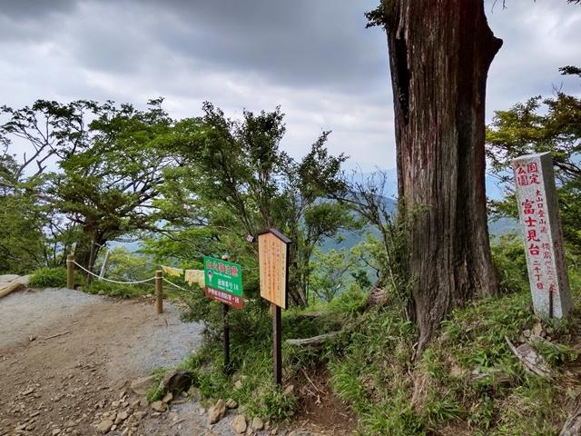 f:id:mochikichi-blog:20210604225021j:plain