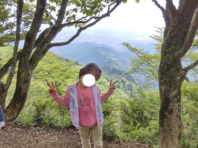f:id:mochikichi-blog:20210604225123j:plain