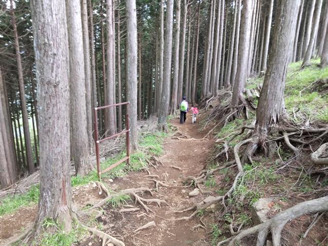 f:id:mochikichi-blog:20210604225224j:plain