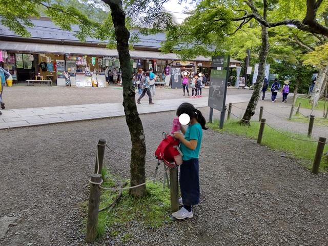 f:id:mochikichi-blog:20210604225240j:plain