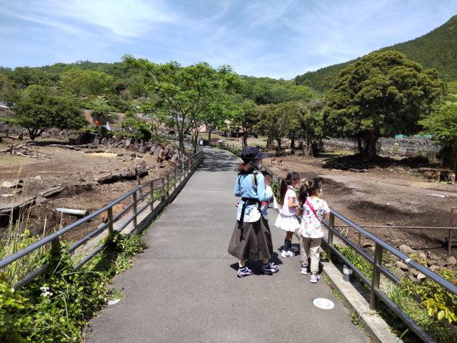 f:id:mochikichi-blog:20210628214317j:plain