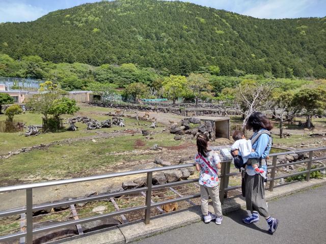f:id:mochikichi-blog:20210628214332j:plain