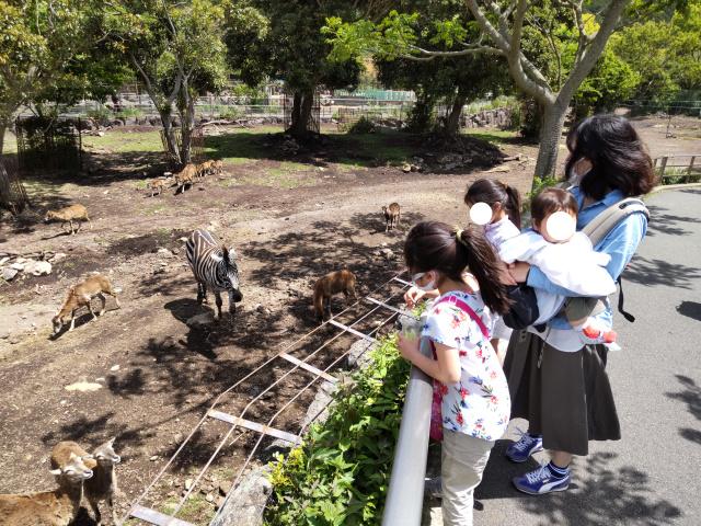 f:id:mochikichi-blog:20210628214427j:plain