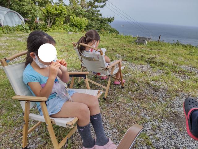 f:id:mochikichi-blog:20210628220643j:plain