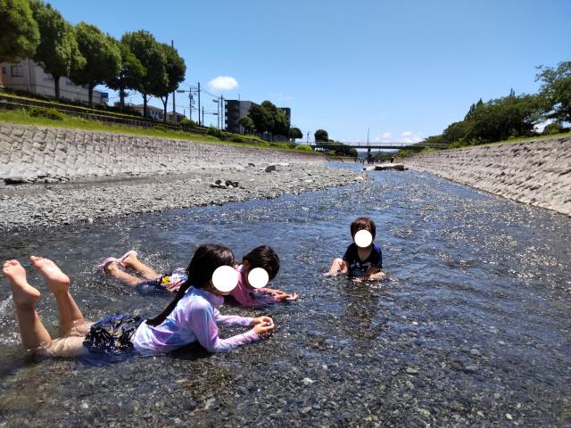 f:id:mochikichi-blog:20210808120231j:plain